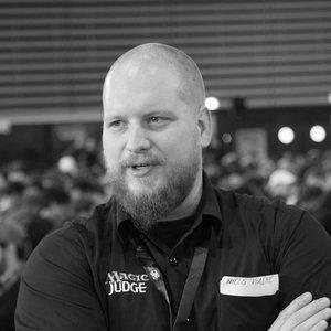 Niels Viaene Judge Photo